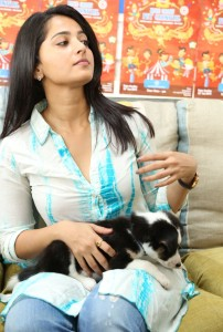 Anushka Photos At Blue Cross Pet Carnival Press Meet 3