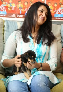 Anushka Photos At Blue Cross Pet Carnival Press Meet 4