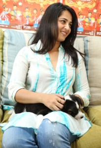 Anushka Photos At Blue Cross Pet Carnival Press Meet 5