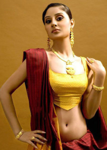 Bhanu Sri Mehra Hot Navel Show Images