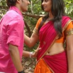 Bhanusri Mehra Navel Photos in Prematho Cheppana Movie