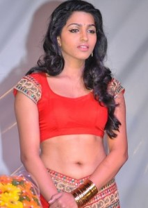 Dhansika Spicy Navel Picturues Gallery