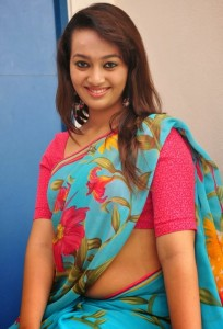 Ester Noronha Hot Saree Images At 1000 Abaddalu Movie Success Meet