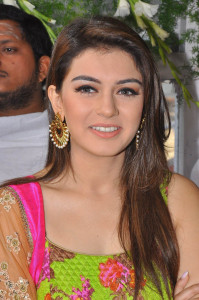 Hansika Motwani Photos At Durga Movie Launch 10