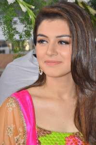 Hansika Motwani Photos At Durga Movie Launch 6