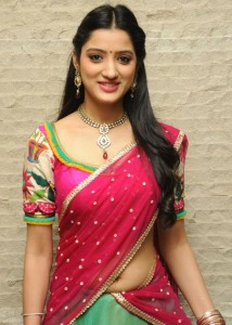 Telugu Actress Richa Panai Hot Navel Show Pictures in Half Saree.