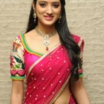Richa Panai Latest Hot Navel Photos in Half Saree