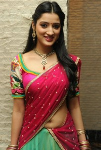 Richa Panai Sexy Navel Images in Half Saree