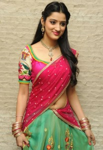 Richa Panai Latest Half Saree Pics