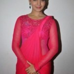 Samantha At Autonagar Surya Movie Audio Launch Photos