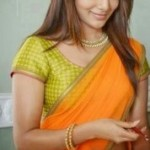 Samantha Half Saree Photos in Rabhasa Movie