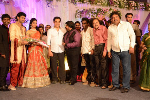 Simbu Sister llakkiya Wedding Reception Photos Gallery 5