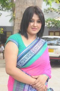 Tamil Actress Sona New Spicy Pictures in Saree