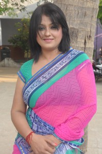 Sona Latest Saree Photos Gallery