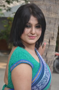 Heroine Sona Hot Saree Pictures