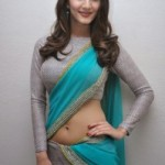 Vaani Kapoor Hot Navel Photos At Aaha Kalyanam Movie Press Meet