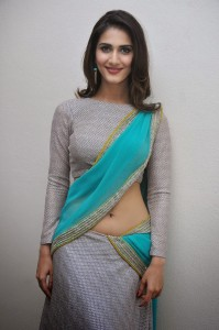 Actress Vaani Kapoor Sexy Navel Pics At Aaha Kalyanam Movie Press Meet