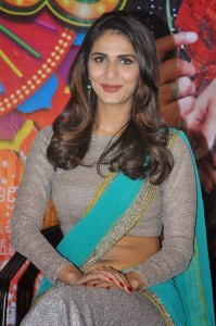 Vaani Kapoor Hot Navel Photos At Aaha Kalyanam Movie Press Meet 14