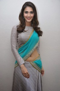 Vaani Kapoor Hot Navel Photos At Aaha Kalyanam Movie Press Meet 15