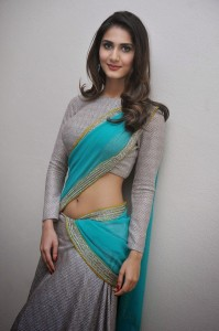 Vaani Kapoor Hot Navel Photos At Aaha Kalyanam Movie Press Meet 16