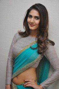 Vaani Kapoor At Aaha Kalyanam Movie Press Meet Stills
