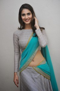 Vaani Kapoor Hot Navel Photos At Aaha Kalyanam Movie Press Meet 3
