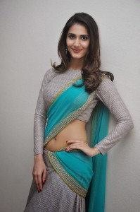 Vaani Kapoor Hot Navel Photos At Aaha Kalyanam Movie Press Meet 4