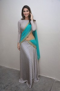 Vaani Kapoor Hot Navel Photos At Aaha Kalyanam Movie Press Meet 7