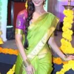 Vaani Kapoor Saree Photos At Aaha Kalyanam Movie Audio Launch