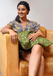 Varudu Movie Actress Bhanusri Mehra Sexy Photos
