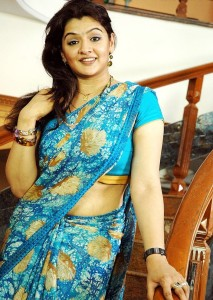 Actress Aarthi Agarwal Hot Saree Pictures