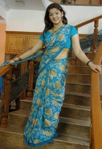 Aarthi Agarwal Hot Images in Saree