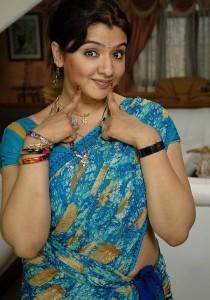 Aarthi Agarwal Sexy Saree Stills