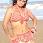 Aarthi Puri Hot Photos At Beach