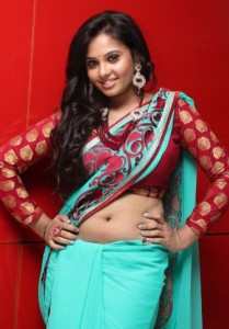 Adithalam Movie Actress Aarushi Hot Navel Photos in Saree