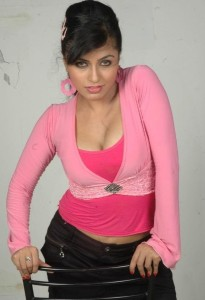Actress Aarthi Puri Hot Cleavage Show Photos