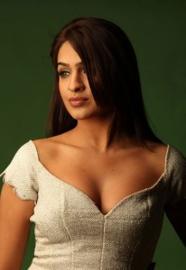 Actress Aditi Agarwal Cleavage Show Pictures