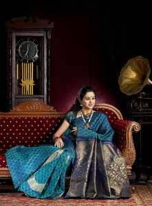 Devayani Photoshoot Photos in Saree