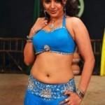 Actress Madhu Sharma Hot Navel Photos in Blue Dress