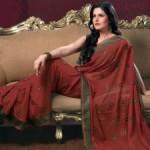 Actress Zarine Khan HD Wallpapers in Saree