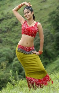 Aditi Sharma Sexy Navel Pics