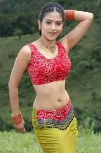 Aditi Sharma Hot Navel Show Images