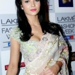 Amy Jackson Sexy Saree Photos
