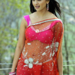 Anushka Navel Show Photos in Transparent Saree