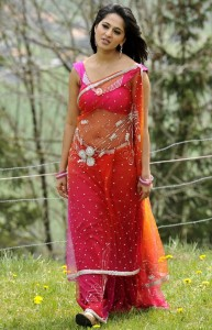 Anushka Navel Photos in Transparent Saree