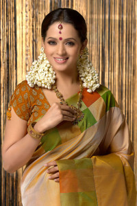 South Actress Bhavana Sexy Photoshoot Pictures in Saree