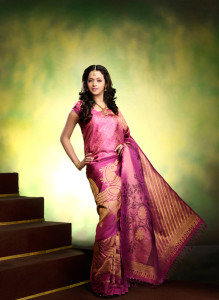 Bhavana Sexy Photoshoot Photos in Saree