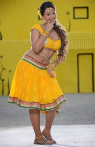 Ester Noronha Hot Navel Show Pics in Bheemavaram Bullodu Movie