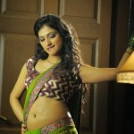 Haripriya Navel Photos in Saree From Abbai Class Ammai Mass Movie