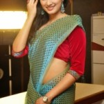 Haripriya Sexy Photoshoot Photos in Saree